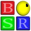BSR Screen Recorder pentru Windows 8