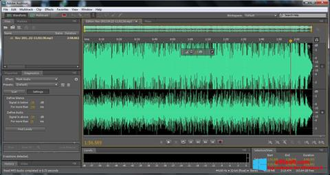 Captură de ecran Adobe Audition pentru Windows 8