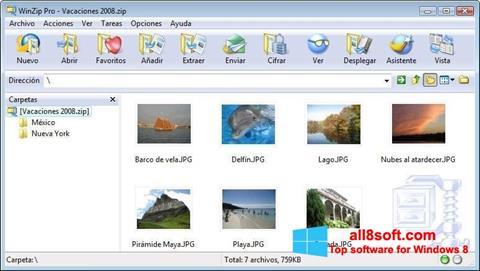 Captură de ecran WinZip pentru Windows 8