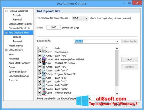 Captură de ecran Ace Utilities pentru Windows 8