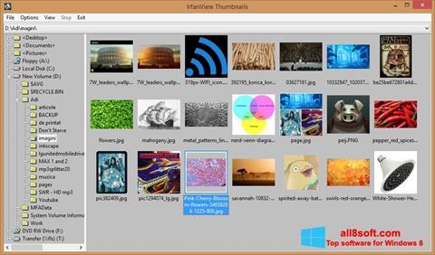 Captură de ecran IrfanView pentru Windows 8