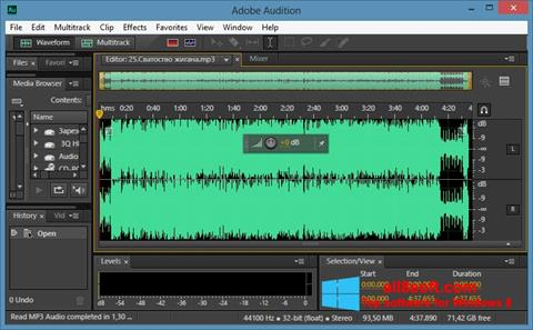 Captură de ecran Adobe Audition CC pentru Windows 8
